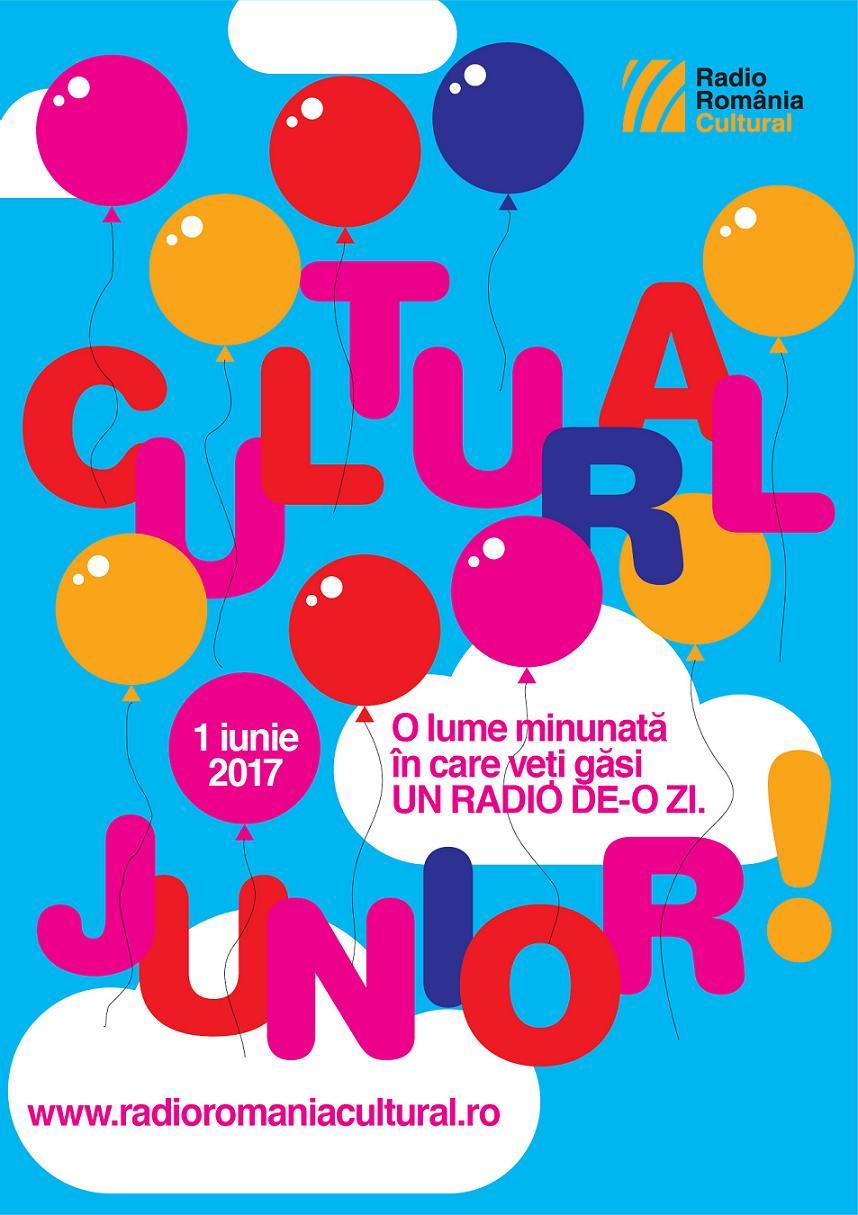 Vizual Cultural Junior